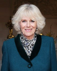 480px-Duchess_of_Cornwall_in_2014_(cropped).jpg